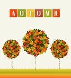 Autumn Colors Trees Abstract Garden Stockfoto