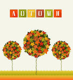 Autumn Colors Trees Abstract Garden. Bright card with fantasy garden with colorful trees. Fall leafage colors. Abstract composition for decorative background Stock Photo