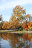 Autumn colors on trees in the Regent's Park London Royalty Free Stock Photography