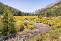 Autumn Colors, vallée de pin, région sauvage collégiale de crêtes, Pike Photo stock