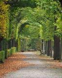 Autumn Colors a Vienna fotografia stock libera da diritti
