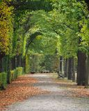 Autumn Colors in Vienna Royalty Free Stock Photo