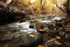 Autumn Colors von McGee-Nebenfluss, Kalifornien Stockfotos