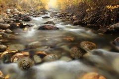 Autumn Colors von McGee-Nebenfluss, Kalifornien Stockfotografie