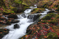 Autumn colors of a waterfall. In Transylvania Royalty Free Stock Photography