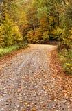 Autumn Colors y camino Fotografía de archivo libre de regalías