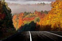 Autumn Colors y camino Imagen de archivo libre de regalías