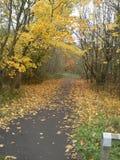 Autumn Colour Photographie stock