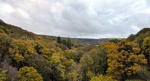 Autumn Colour Royalty Free Stock Image