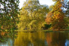 Autumn colour in the park, London Stock Photography
