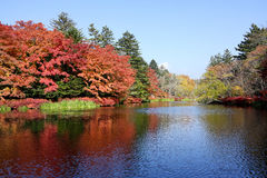 Autumn colour of pond Stock Photography