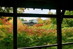 Autumn colour at Tofukuji in Kyoto royalty free stock image