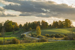 Autumn coloured trees and fields Stock Images