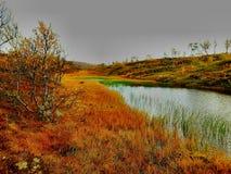 Autumn Colours royalty-vrije stock afbeelding