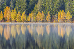 Autumn Colours Fotografia de Stock Royalty Free