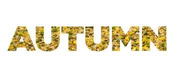 Autumn Colours Imagem de Stock Royalty Free
