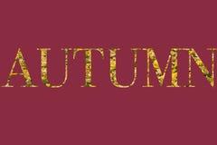 Autumn Colours Fotos de Stock