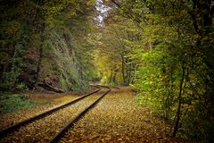 Autumn, Colours, Bright Stock Photography