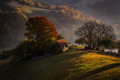 Autumn colours in the dawn on the hills Royalty Free Stock Image
