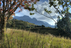 Autumn colours in Drakensberg. Ray of sunshine light the autumn colours of trees and grasses in the Drakensberg Mountain Stock Image
