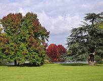 Autumn Colours In An English Park Royalty Free Stock Photography