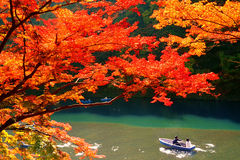 Autumn Colours in Kyoto. Autumnal orange and red colours of Japanese maple leaves near Katsura river in Arashiyama, Kyoto, Japan royalty free stock image