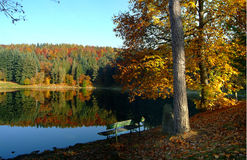 Autumn colours on a lake Royalty Free Stock Photography