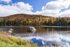 Autumn colours by the lake and the mountains. Picture depicting Autumn season at its peak in rural Canada (quebec).  We can see a small mountains full of multi Royalty Free Stock Photography