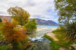 Autumn colours at Lake Wanaka in Central Otago region of New Zealand, river stream, lake and hills at the background. Autumn landscape colourful scenery with royalty free stock images