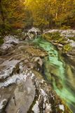 Autumn colours in the Mostnica Gorge in Slovenia. Autumn colours in the beautiful Mostnica Gorge in Slovenia Royalty Free Stock Images