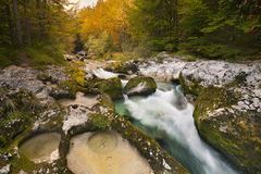 Autumn colours in the Mostnica Gorge in Slovenia. Autumn colours in the beautiful Mostnica Gorge in Slovenia Royalty Free Stock Photos