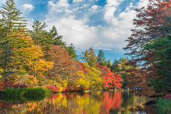 Autumn colours pond Stock Photography