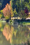 Autumn colours reflection Royalty Free Stock Image