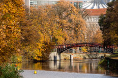Autumn Colours by the River Stock Image