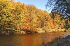 Autumn colours, riverside walk, November 2013 Stock Photos