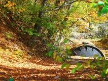 Autumn colours in Romania. Typical autumn colours at Doftana River Valley, Prahova County, Romania Stock Photos