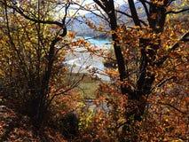 Autumn colours in Romania. Typical autumn colours at Paltinu lake, Doftana River Valley, Prahova County, Romania Stock Photo