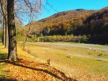 Autumn colours in Romania. Typical autumn colours at Doftana River Valley, Prahova County, Romania Royalty Free Stock Photography