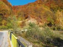 Autumn colours in Romania. Typical autumn colours at Doftana River Valley, Prahova County, Romania Royalty Free Stock Photos