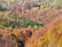 Autumn colours in Romania. Typical autumn colours at Doftana River Valley, Prahova County, Romania Stock Image