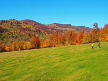 Autumn colours in Romania Royalty Free Stock Photography