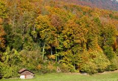 Autumn colours in Switzerland Royalty Free Stock Photo