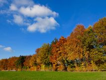 Autumn colours in Switzerland Royalty Free Stock Images