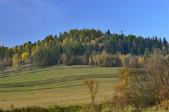 Autumn Colours - Trees on a hill in Slovakia stock photo