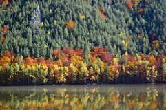 Autumn Colours - Trees on a hill in Slovakia reflecting in a lake royalty free stock image