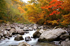 Autumn colours of valley Stock Photos