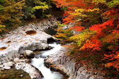Autumn colours of valley Royalty Free Stock Image