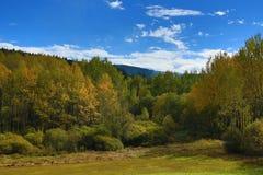 Autumn Colours, Zelezna Ruda, Boemerwald, Sumava Czech Republic Stock Images
