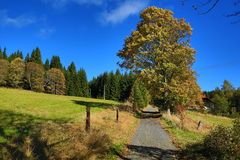 Autumn Colours, Zelezna Ruda, Boemerwald, Sumava Czech Republic Royalty Free Stock Photo