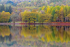 Autumn colurs reflected in a lake Royalty Free Stock Images